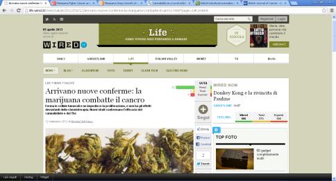 cannabis-Life-1-6