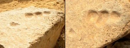 Abu Ghurab, in Egitto (vicino a Saqqara)-dita