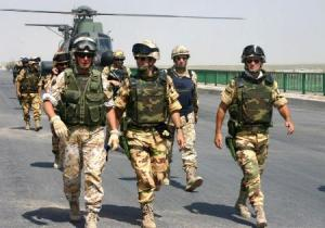 forze-armate-2014