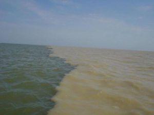 dunare vs marea negra