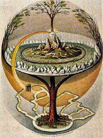 albero della vita tagliato-colorato