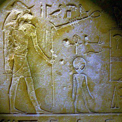 gri egipt
