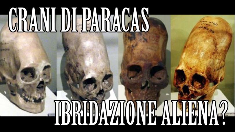 zei cranii paracas cu scris