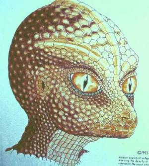 zei-crocodilul