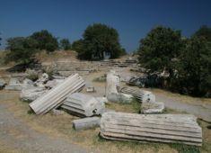 troia12.coloane cazute