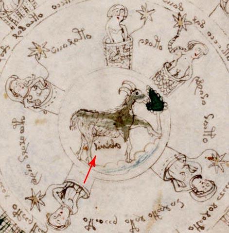 voinic astrologia 6